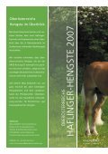 stecher ii - Pferdezucht-Austria - Seite 2