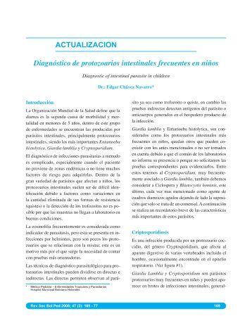 ACTUALIZACION Diagnóstico de protozoarios intestinales ... - SciELO