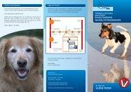 Praxisflyer - Tierärztliche Praxis ausschließlich Physiotherapie Dr ...