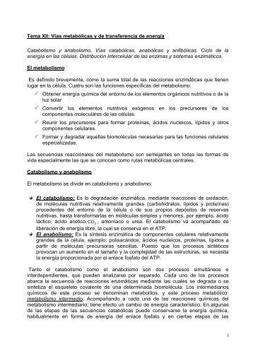 Cartilla BIOQUIMICA [Tomo II].pdf - Universidad Nacional de Salta