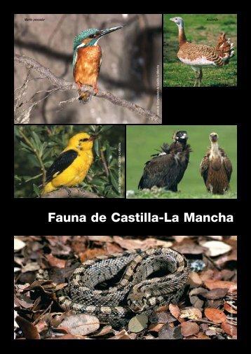 Fauna de Castilla-La Mancha - Ilustre Colegio Oficial de Ingenieros ...