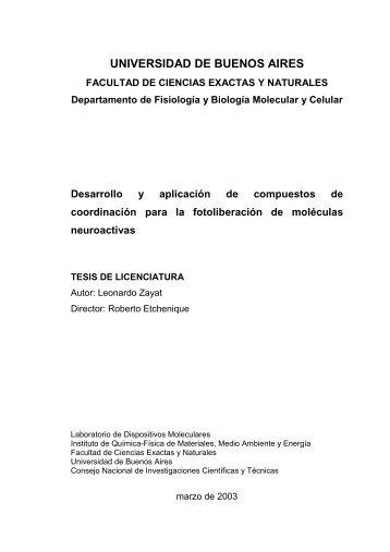 UNIVERSIDAD DE BUENOS AIRES - Dr. Roberto Etchenique ...