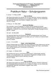 Praktikum Natur Schulen 2009 - Pfalzmuseum für Naturkunde