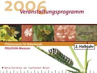 Veranstaltungsprogramm 2. Halbjahr 2006 - Pfalzmuseum für ...