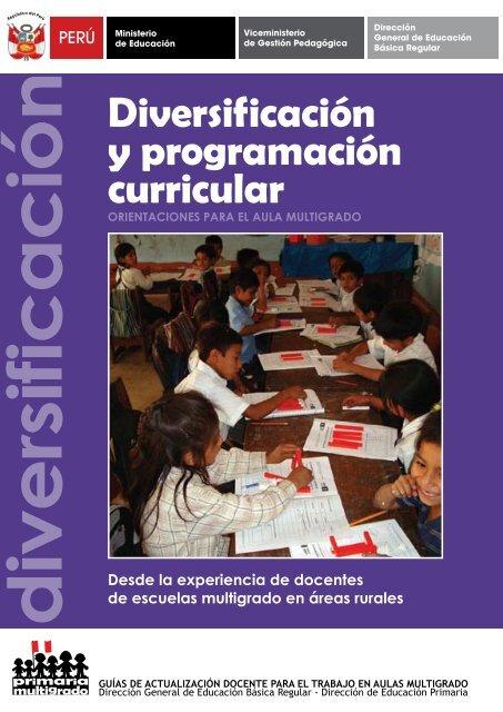Diversif Icación Y Programación Curricular Educación