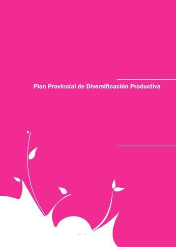 Plan Provincial de Diversificación Productiva - COPADE
