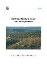 Kohlenstoffbindung junger Aufforstungsflächen - PRIMAKLIMA ...