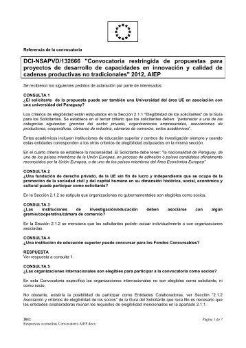 convocatoria dci-nsapvd/132666, preguntas y respuestas