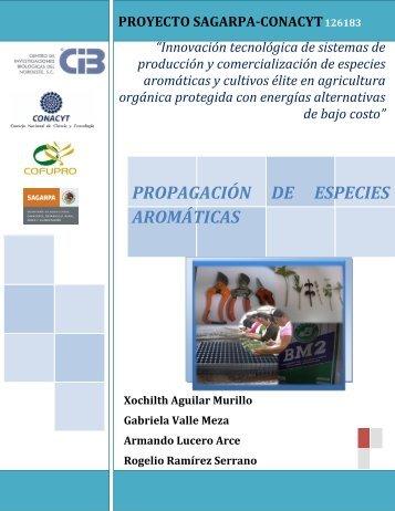 propagación de especies aromáticas - Centro de Investigaciones ...