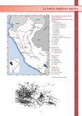 Pueblos del Perú - SIL Home - Page 5