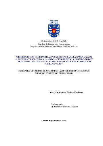 Tesis Descripción de Prácticas Pedagógicas para la enseñanza de ...
