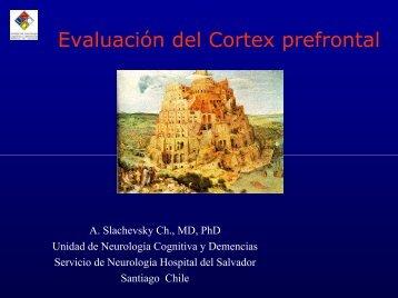 Evaluación del Cortex prefrontal