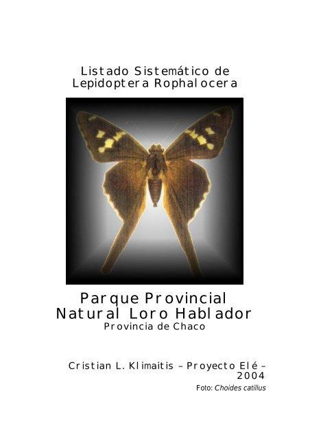Mariposas Reserva Natural Loro Hablador