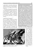 Preparering och montering av näbbvalen Valders skelett - Page 5