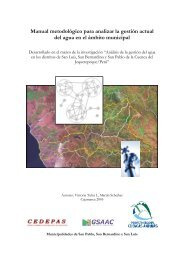 Manual metodológico para analizar la gestión ... - Portal Cuencas