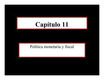 Cap11a - ITAM