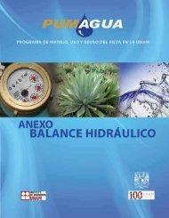 Descargar Anexo Balance Hidráulico PDF, 20 MB - Red del Agua ...