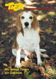 Heft 3/2002 - Pro Tier