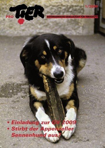 Heft 1/2009 - Pro Tier
