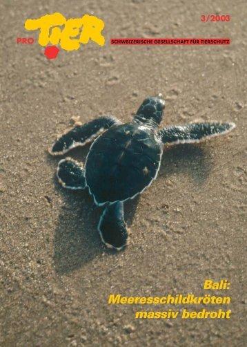 Heft 3/2003 - Pro Tier