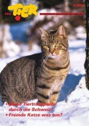Heft 4/2006 - Pro Tier