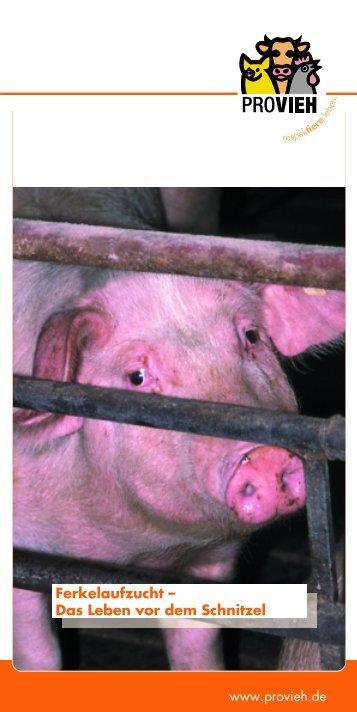 Ferkelaufzucht - Verein gegen tierquälerische Massentierhaltung eV