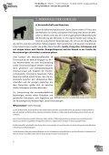 PRO WILDLIFE – SCHULMATERIALIEN GORILLASCHUTZ - Seite 2