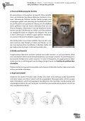 PRO WILDLIFE – SCHULMATERIALIEN GORILLASCHUTZ - Seite 4