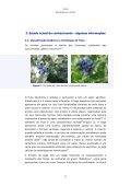 Mirtilo - Qualidade pós-colheita - INRB - Page 7