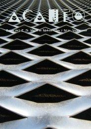 Revista del I .E .S . Miguel de Molinos. Año 7 Nº 21 Verano 2009
