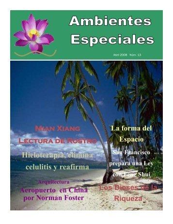 abril 2008 num 13.pdf