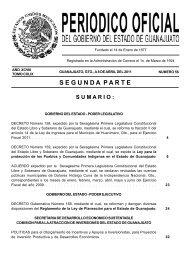 guanajuato, gto. - IPRO: Iniciativa para el fortalecimiento de la ...