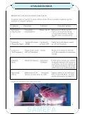 BOLETIN 3 NOV - SAMEFA - Page 7
