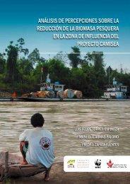 Descargar PDF - Vigila Amazonia