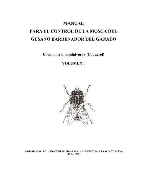 mosca parásito en florida
