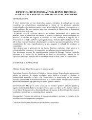 ESPECIFICACIONES TÉCNICAS PARA BUENAS ... - Sefoa