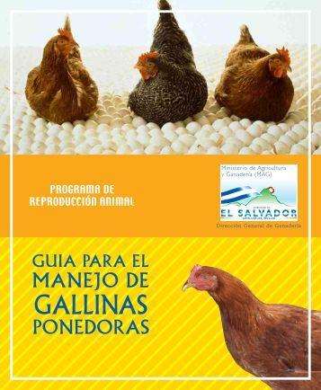 Guía El manejo de gallinas ponedoras