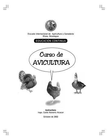 Curso de AVICULTURA - Red de mujeres para el desarrollo