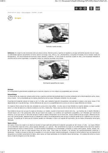 Scrapie - ovinos-caprinos