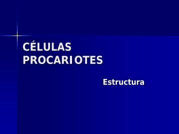 CELULAS PROCARIONTES