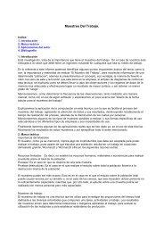 Muestreo Del Trabajo.pdf