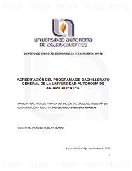 Trabajo de Titulación Maestría Eduardo Guerrero Miranda.mdi