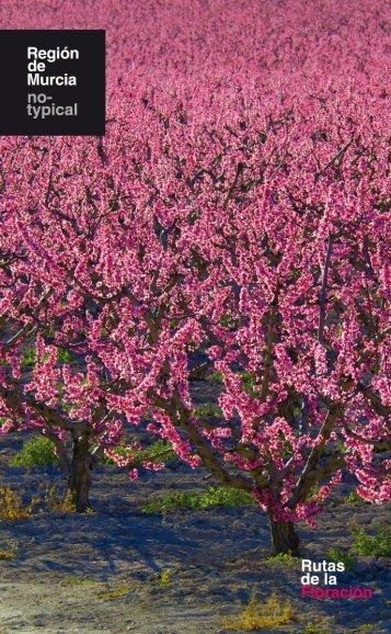 Folleto Ruta de la Floración en Cieza