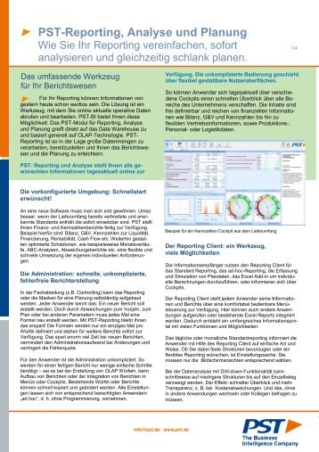 PST Reporting Planung 2013.pdf, Seiten 1-4