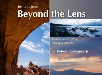 Insights_From_Beyond_the_Lens