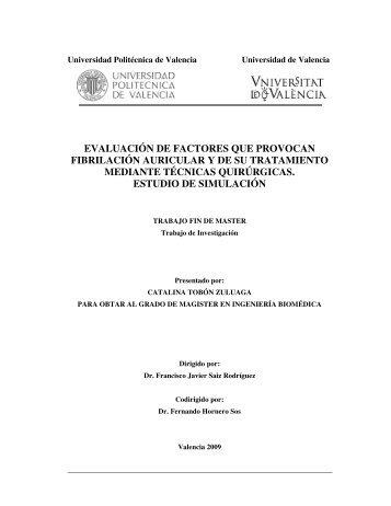Tesis pablo riunet upv for Universidad de valencia master
