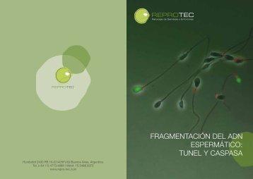 FRAGMENTACIÓN DEL ADN ESPERMÁTICO: TUNEL Y CASPASA
