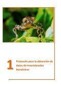 Protocolos de muestreo de comunidades biológicas acuáticas ... - Page 4