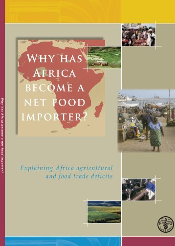 Why has Africa become a net food importer?
