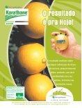 Paraná: uma citricultura de respeito ao solo - GTACC - Page 2